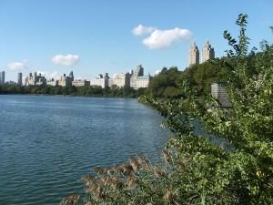 Reservioir Lake, central park, New York