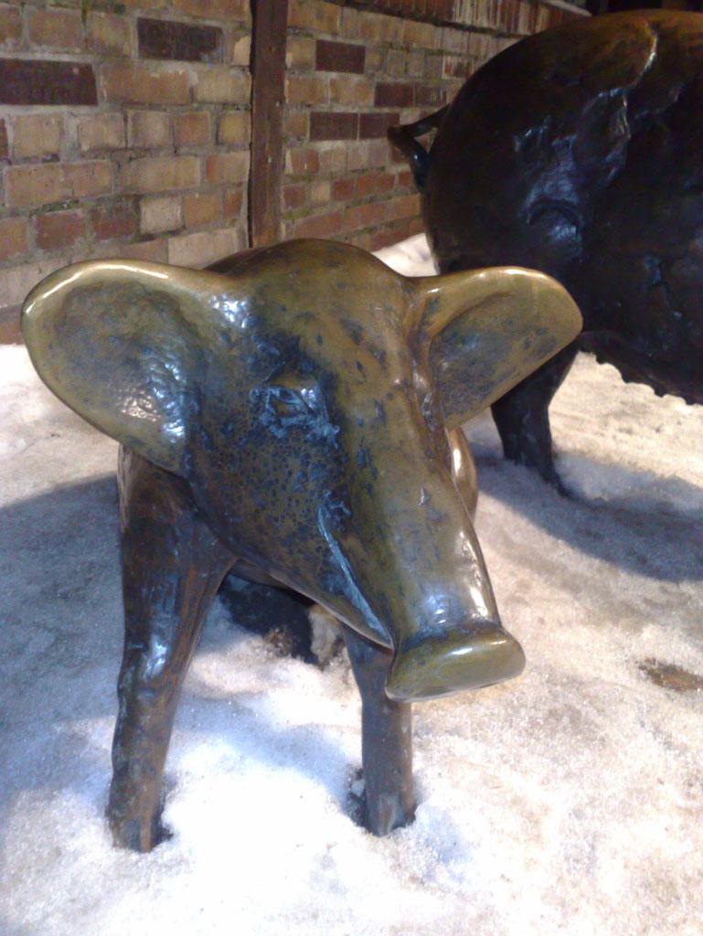 Statue de cochon, Wroclaw