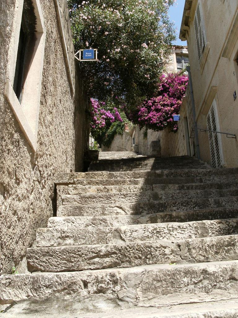 Escalier et lilas, centre ville de Dubrovnik