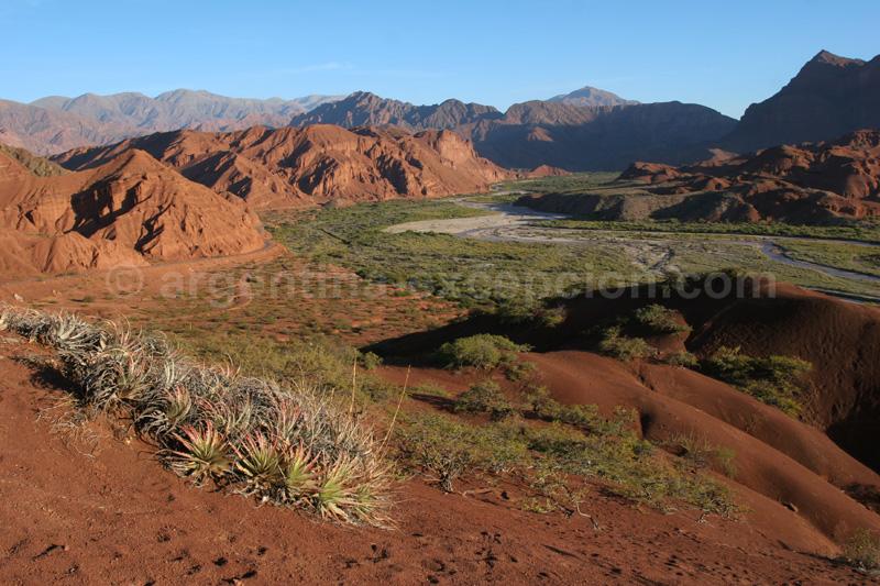 Las-Conchas,-nord-ouest-Argentin