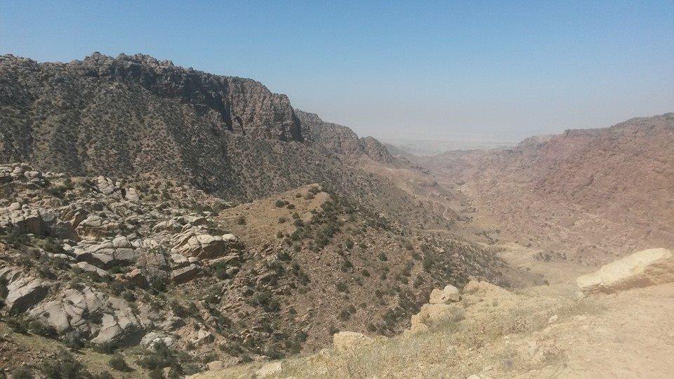 canyon-dana